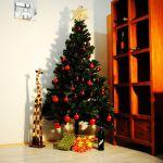 Nechte do vašich domovů vstoupit kouzlo Vánoc