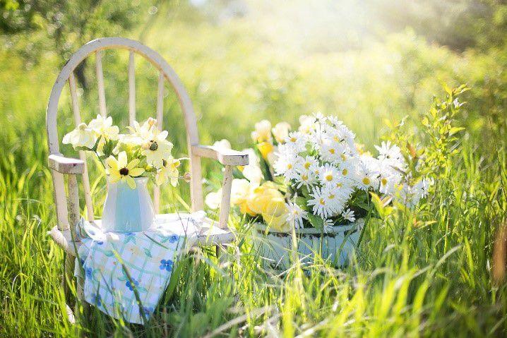 Připravte zahradu na příchod jara!