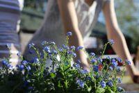 Práce i odpočinek na zahradě