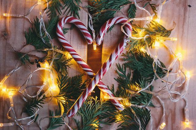 Vše k Vánocům na jednom místě