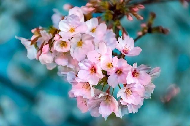 Jarní slevy