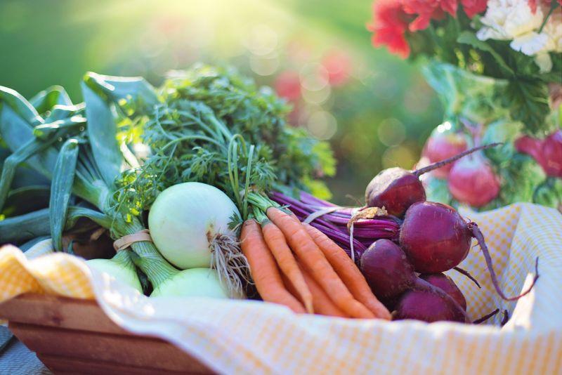 Čerstvá zelenina přímo ze zahrádky