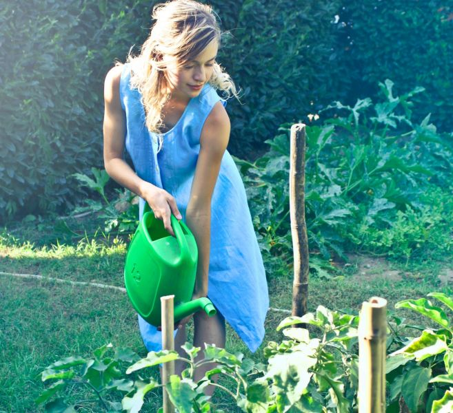 Poraďte si se suchem na zahradě