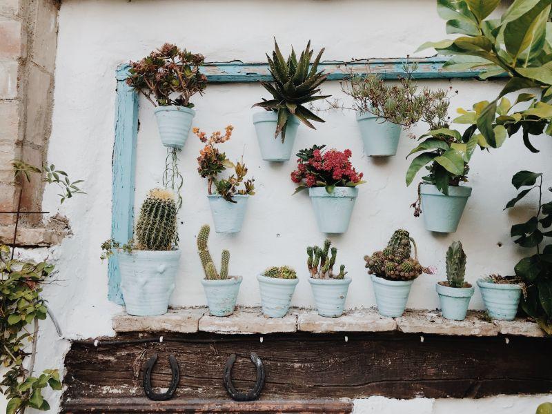 5 tipů pro krásnější zahradu