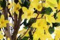 Umělá květina - forsythia - zlatice - 130 cm