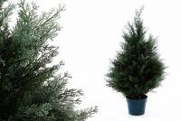 Umělý strom rostlina - cypřiš - 70 cm