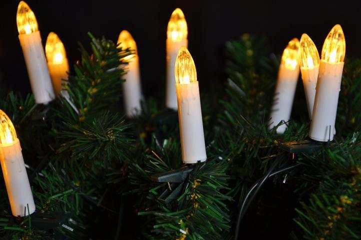 Vánoční osvětlení - Vánoční stromky, 16 LED, teple bílé