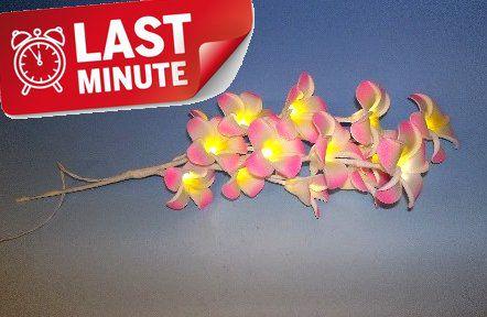 LED světelná dekorativní větvička - magnolie - studená bílá 10 LED