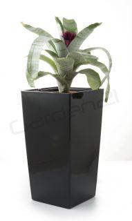 Samozavlažovací květináč G21 Linea small černý 28cm