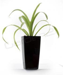 Samozavlažovací květináč G21 Linea mini černý 14cm