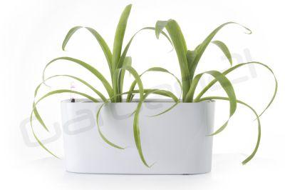 Samozavlažovací květináč G21 Combi mini bílý 40cm