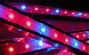 LED svítidlo Premium Line lighting pro akvária (Modrá/Červená) vodotěsné - 34cm