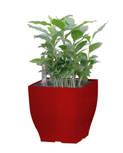 Květináč G21 Cube mini 13.5cm, červený
