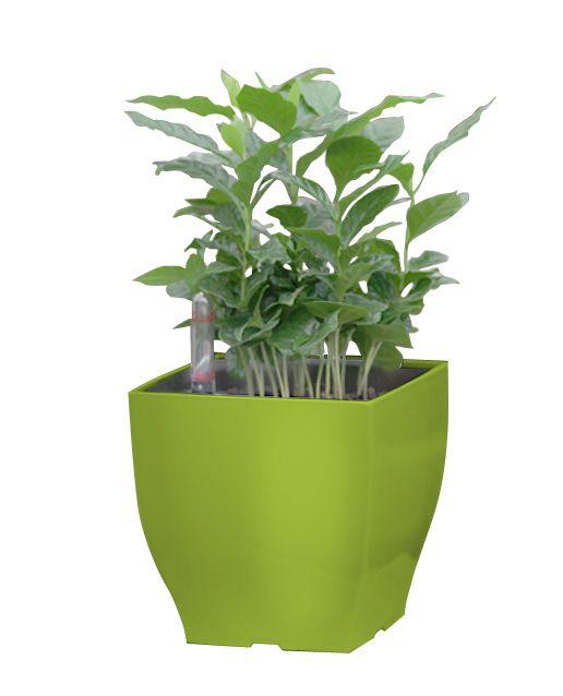 Květináč G21 Cube mini, 13.5cm, zelený