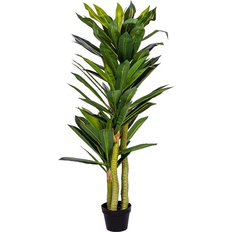 PLANTASIA Umělý strom Dracaena 120 cm, 81 listů