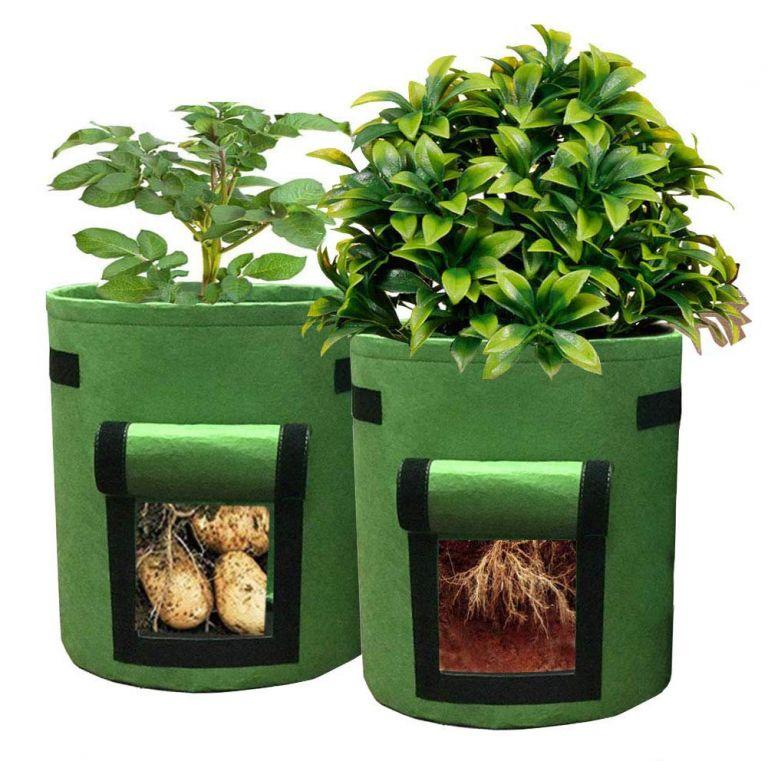 Domácí zahrádka - květináč zelený