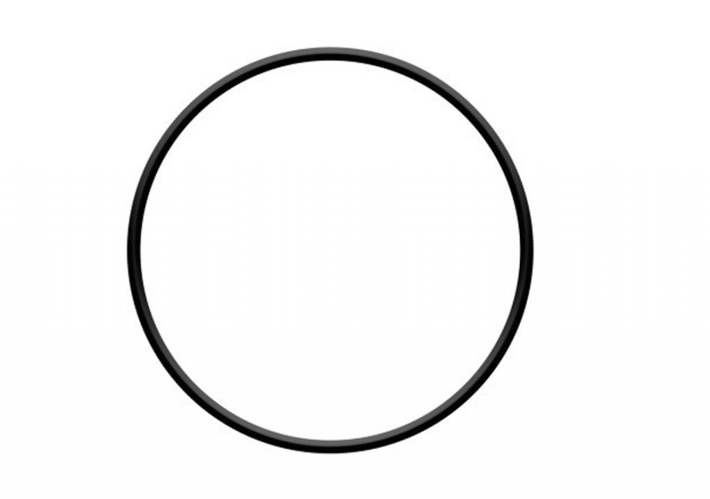 Těsnění víka o-kroužek pro filtraci ProStar 4,6