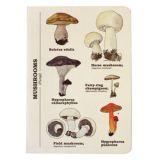 Blok s houbami