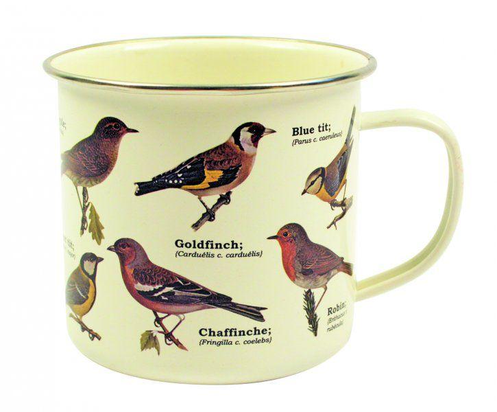 Plecháček – Ptáci