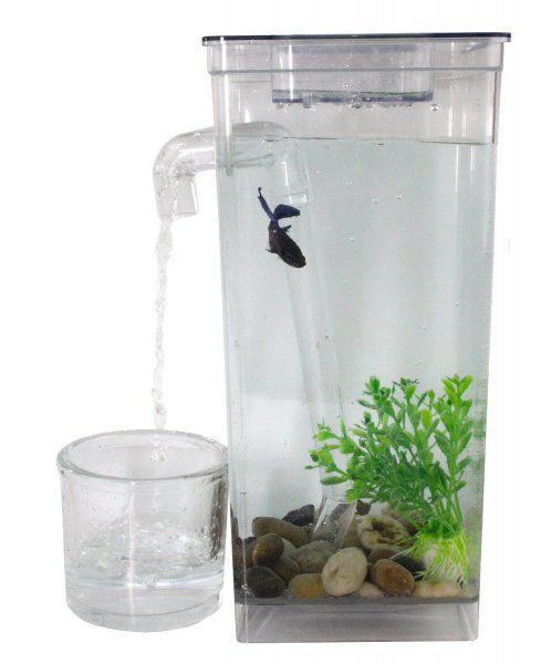 Samočistící akvárium My Fun Fish