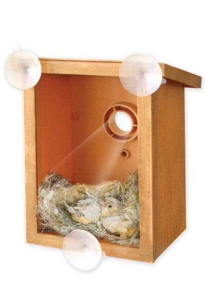 Transparentní ptačí budka na okno - My Spy Birdhouse