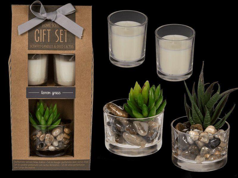 Sada vonných svíček s dekoračním kaktusem
