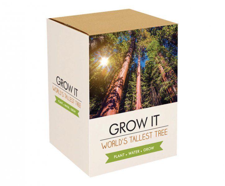 Grow it – Nejvyšší strom na světě: Sekvoj