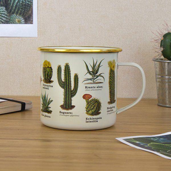 Plecháček - botanika