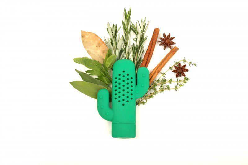 Infuzér na koření – kaktus