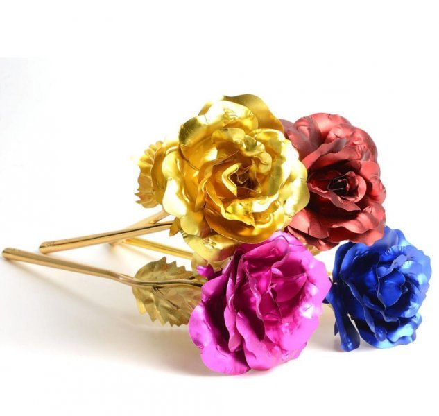 Barevná dekorativní růže