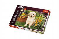 Puzzle Labrador v zahradě 500 dílků 48x34cm v krabici