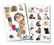 Pexeso Kočky společenská hra 32 obrázkových dvojic