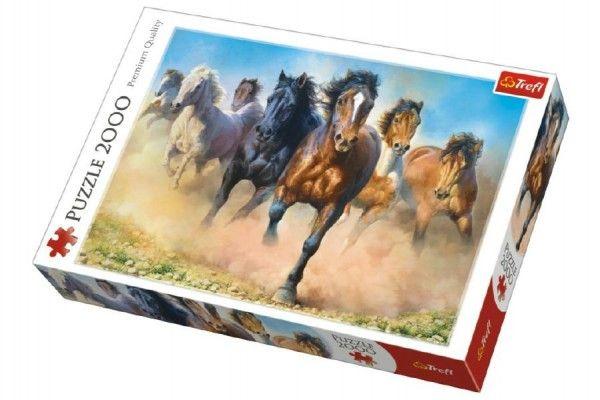Puzzle Stádo koní
