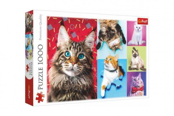 Puzzle Šťastné kočky 100 dílků