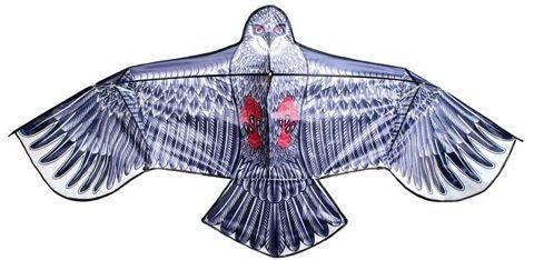 Létající drak orel - 200 x 83 cm