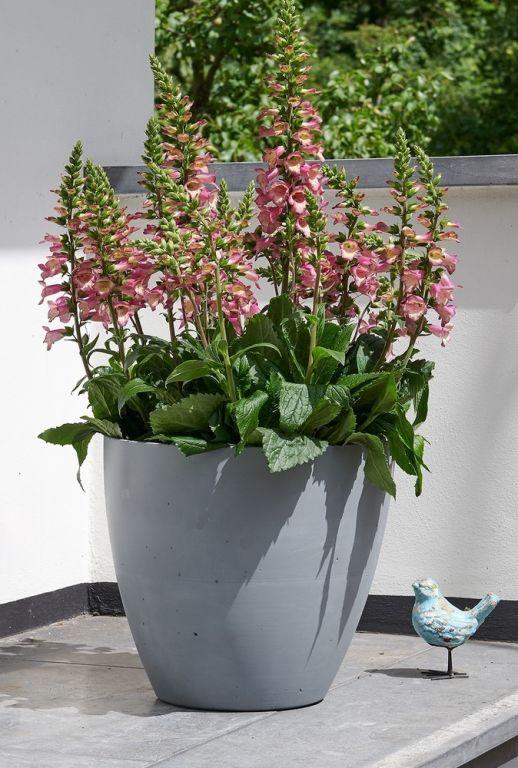 Plastový květináč BETON PLANTER – 53 cm